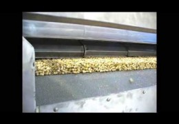 Embedded thumbnail for  Video about unloading nuts from our roaster